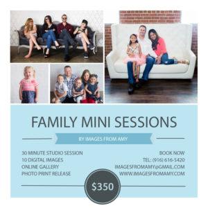 Sacramento Mini-sessions